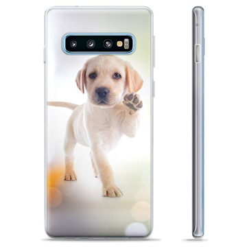 Samsung Galaxy S10+ TPU Case - Dog
